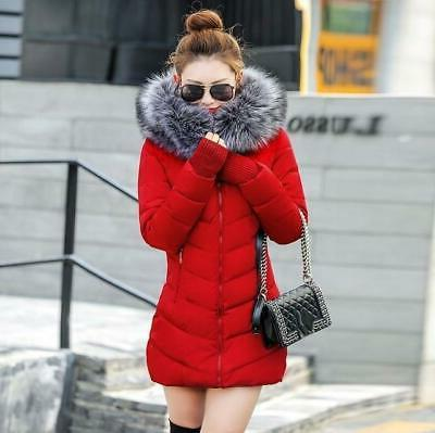 sexy new winter cotton jacket for women